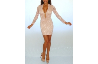 NUDE BLUSH DEEP PLUNGE LACE BODYCON DRESS